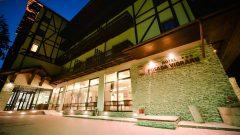 Posada Vidraru – Eastern European Restaurant – Hotel Recreation Center